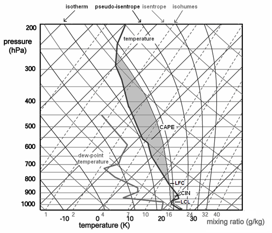 forecasting severe convective storms : skew t diagram - findchart.co